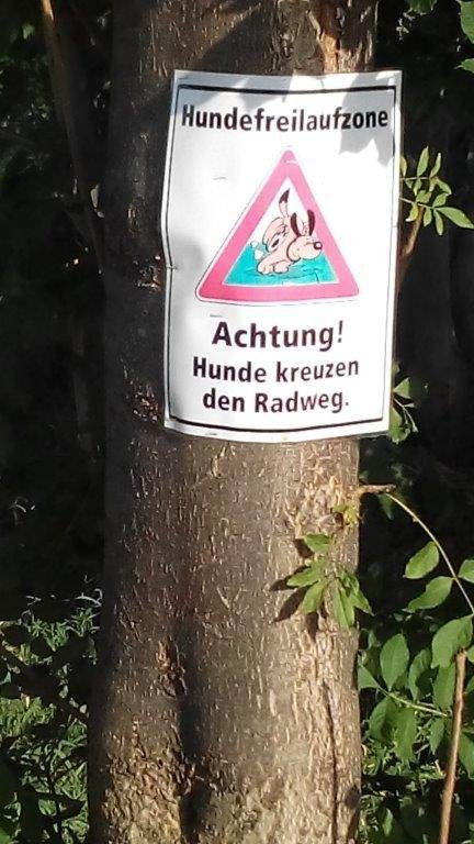 Hundefreilaufzone in Gebesee